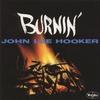 Couverture de l'album Burnin'