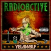 Couverture de l'album Radioactive (Deluxe Version)