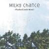Couverture du titre Flashed Junk Mind
