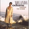 Cover of the album Through the Storm