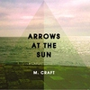 Cover of the album Arrows at the Sun