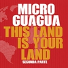 Cover of the album This Land Is Your Land - Single