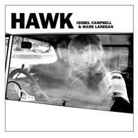 Cover of the track Hawk