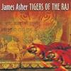 Couverture de l'album Tigers of the Raj