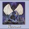 Couverture de l'album Wings of Comfort