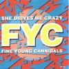 Couverture du titre She Drives Me Crazy 61