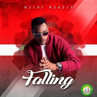 Couverture du titre Falling - Single