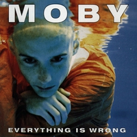 Cover of the track Everything Is Wrong