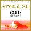 Cover of the album Shiatsu Gold