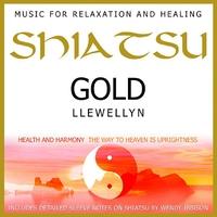 Cover of the track Shiatsu Gold