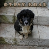 Cover of the album Gypsy Road