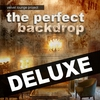 Cover of the album The Perfect Backdrop (Deluxe)