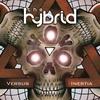 Couverture de l'album Versus Inertia