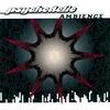 Couverture de l'album Psychedelic Ambience