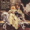 Cover of the album Celtic Love Songs