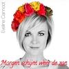 Couverture de l'album Morgen Schijnt Weer De Zon - Single