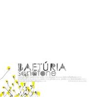 Cover of the track Sonotone