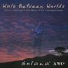 Couverture de l'album Walk Between Worlds