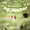 Cover of the album Botanicula Soundtrack
