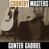 Couverture de l'album Country Masters