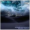 Cover of the album Sail / Desire (Frank Tastik & Monsieur Mooch Meets Vogel & Hauter)