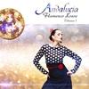 Cover of the album Andalucía Flamenco House, Volume 1