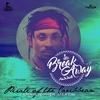 Couverture de l'album Pirate of the Caribbean - Single