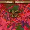 Cover of the album Essential Blues Masters