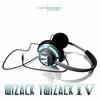 Couverture de l'album Wizack Twizack - IV