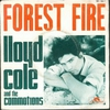 Cover of the track Forest Fire