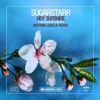 Cover of the track Hey Sunshine (Antonio Giacca Remix) [feat. Alexander] [Remixes] - Single