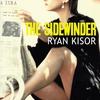 Couverture de l'album The Sidewinder