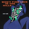 Cover of the album Won't Find Love in the Hills - EP
