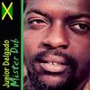 Couverture de l'album Mister Dub