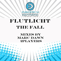 Cover of the track The Fall (Remixes)