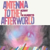 Cover of the album Antenna to the Afterworld