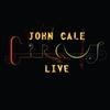Couverture de l'album Circus Live