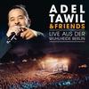 Couverture de l'album Adel Tawil & Friends: Live aus der Wuhlheide Berlin