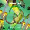 Couverture de l'album Mermaid of Bahia - Single