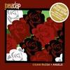 Couverture de l'album Cigani Ruzsa + Angelo (Special Edition)