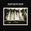 Couverture de l'album Synapscape