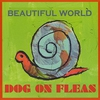 Cover of the album Beautiful World