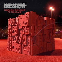 Cover of the track Through the Night (Remixes) [feat. Tom Cane]