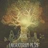 Cover of the album Rasti