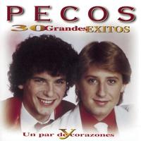 Cover of the track 30 grandes exitos y un par de corazones (disc 1)