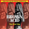 Cover of the album Brown Acid: The First Trip