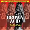Couverture de l'album Brown Acid: The First Trip
