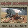 Couverture de l'album Ridin' Out The Storm