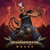 Cover of the album Headbangers Balls, The Album 2013
