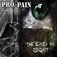 Cover of the track No End in Sight